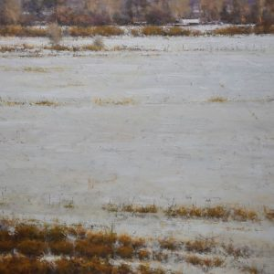 Young-A Late Winter Field 30x36