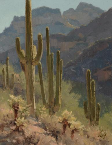Oberg - 1998,  Mountain Saguaros 10x8