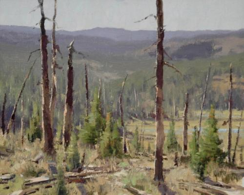 Smith - Yellowstone, 8x10, 2006